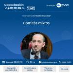 Capacitación: Comités mixtos – Jueves 29 de julio – 15 hs